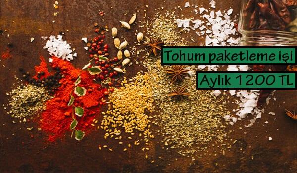 Evde tohum paketleme işi